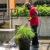 pressure-washing-building-patios-walkways